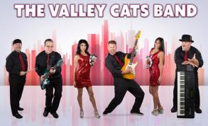 The Valley Cats Band photo