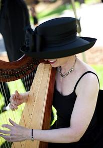 Celtic Harp Music by Anne Roos photo