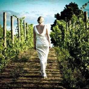 Wine Country Weddings and Events